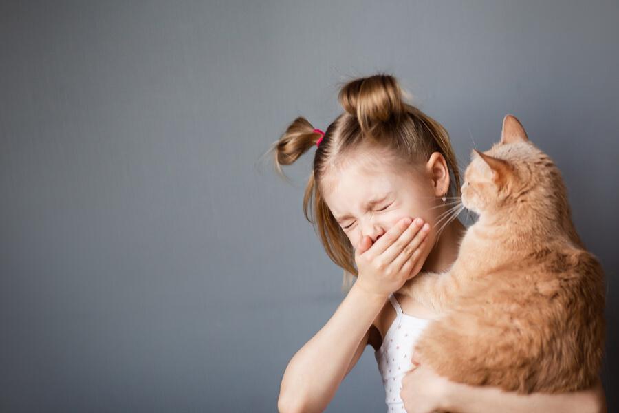 alergia na kota u dzieci