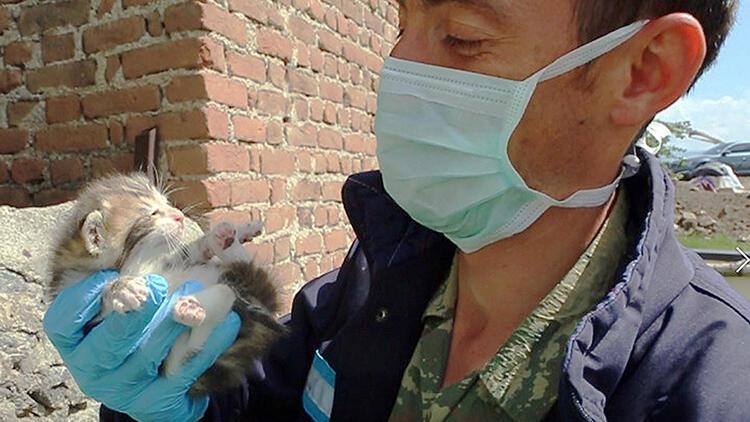 kotek uratowany z domu do rozbiórki