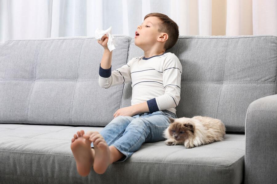 Chłopiec z alergią na kota