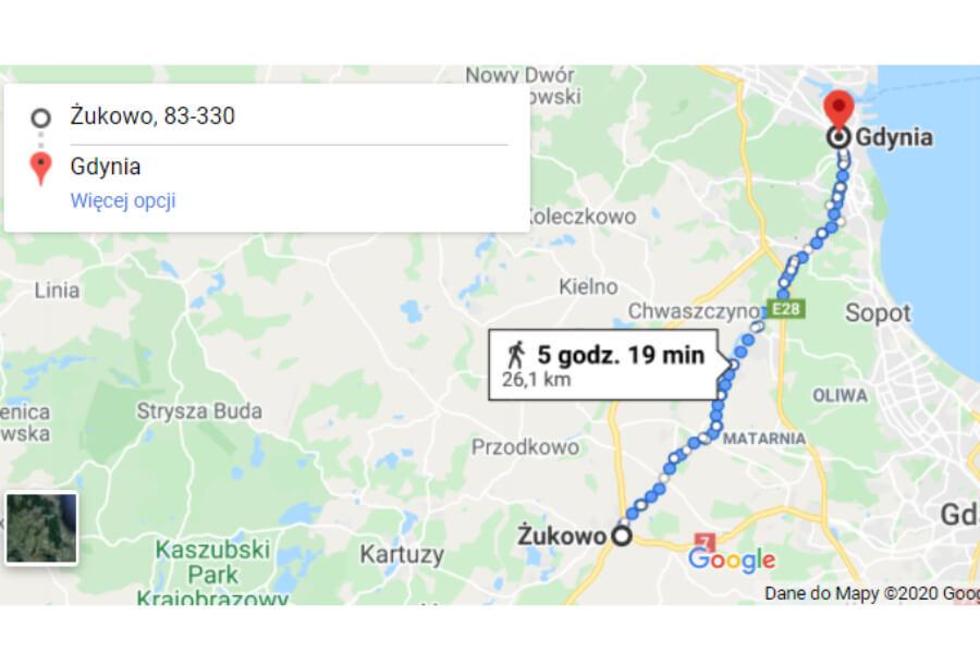 Pies przebył 30 kilometrów