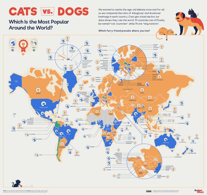mapa psy i koty
