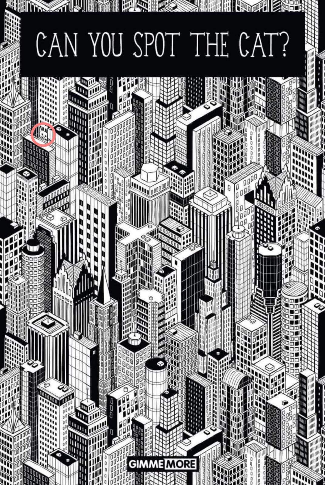 disegno-in-bianco-e-nero-di-città-con-gatto-nascosto