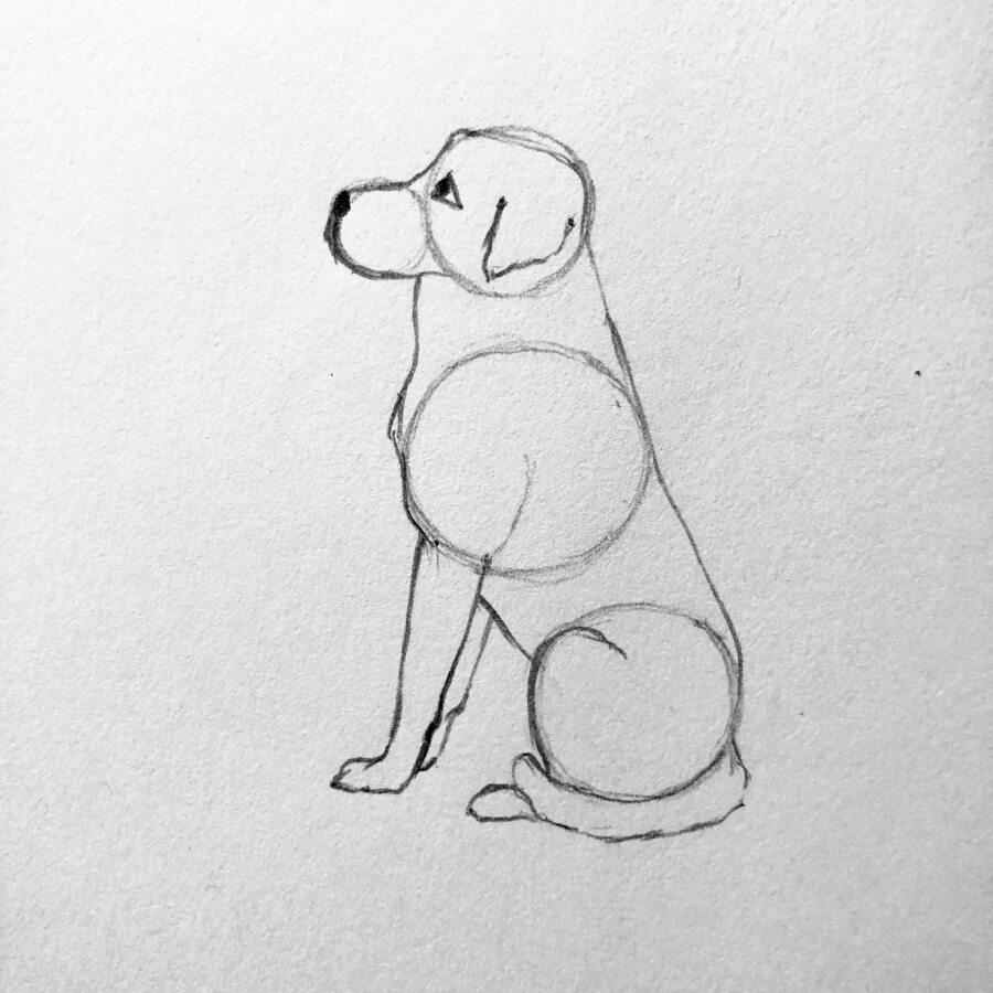rysunek psa 4