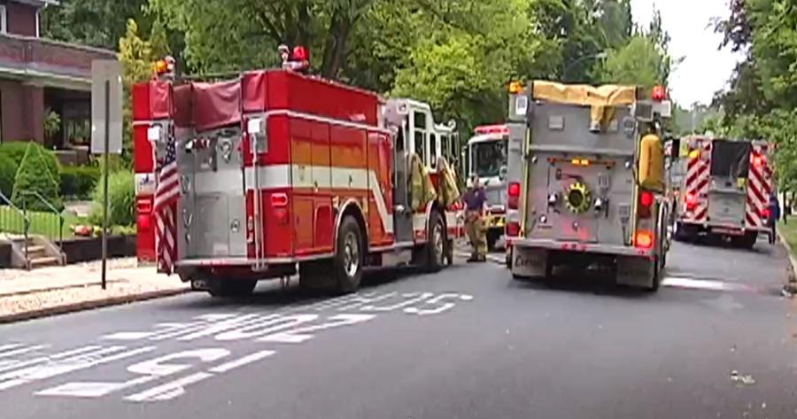 bomberos rescatan gato incendio
