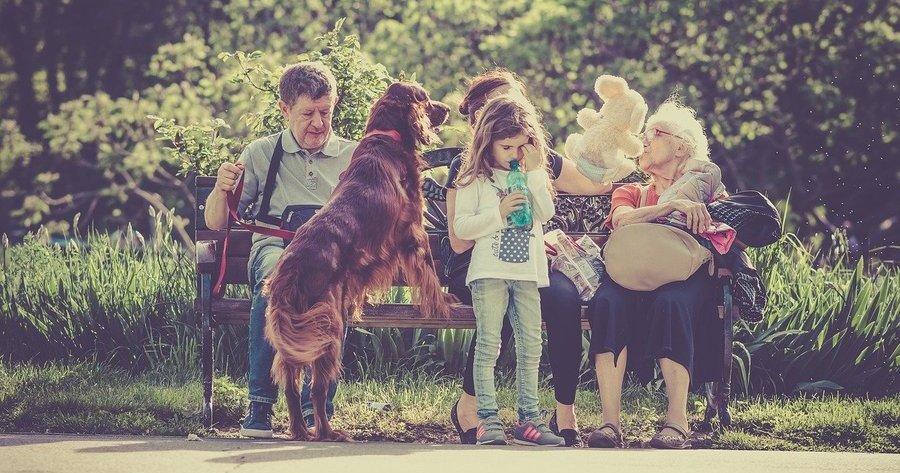 cani-con-anziani-e-bambini