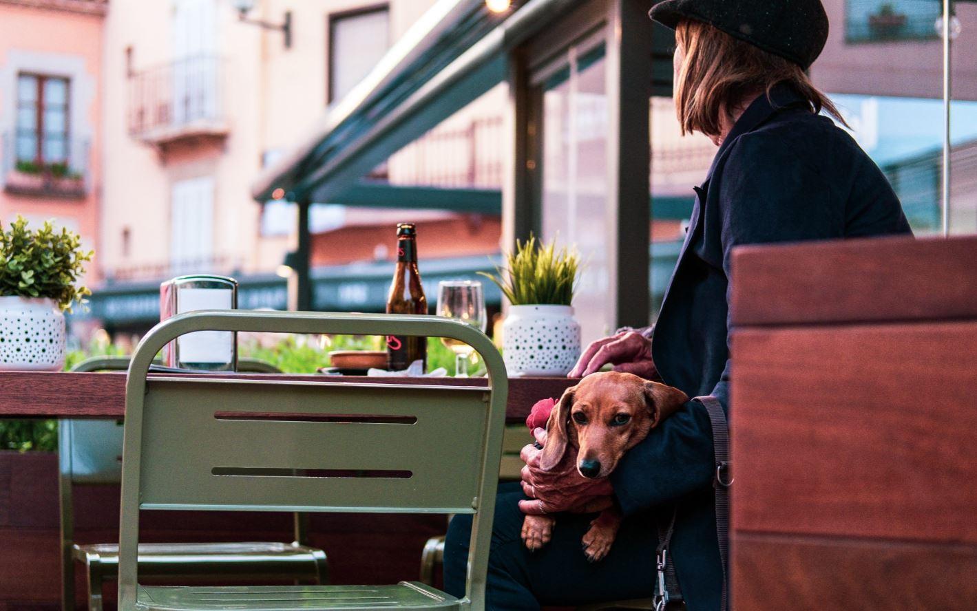 Planes con tu perro desayunar en madrid