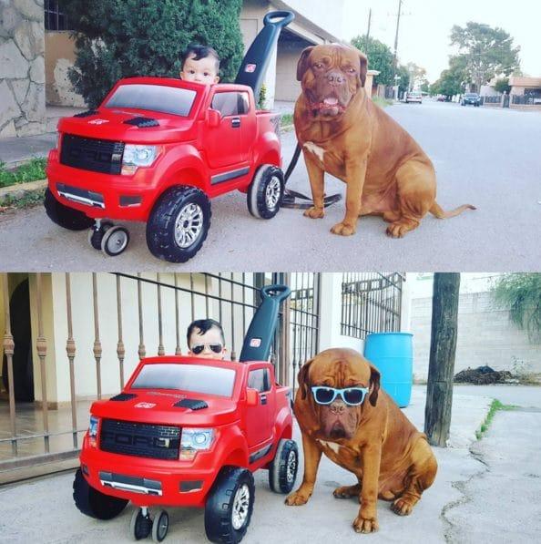 bebe en coche de juguete con perro