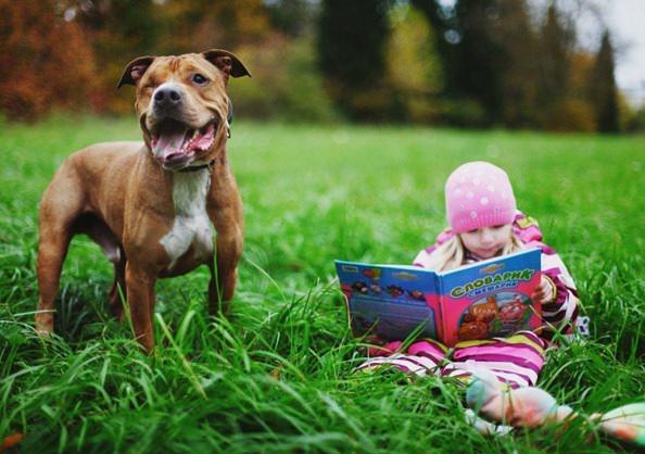 niña leyendo en parque junto a su perro