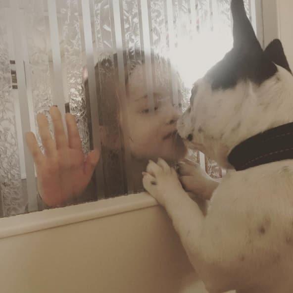 perro y niña beso