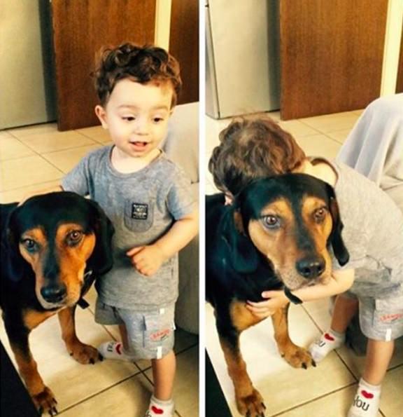 perro y niño abrazo