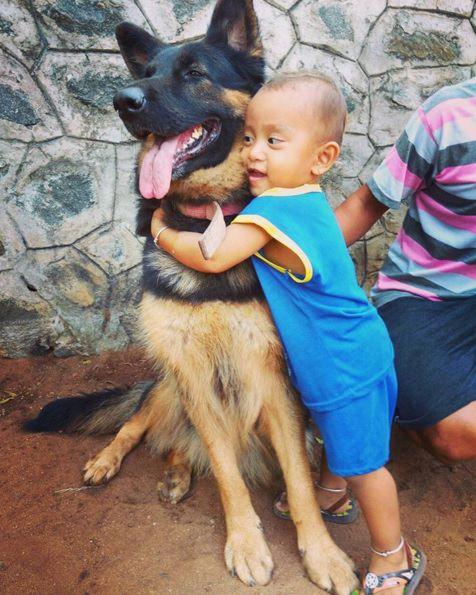 niño abraza a pastor aleman