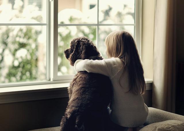 perro niña triste