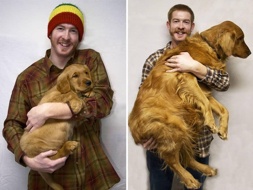 cachorro de perro un año despues