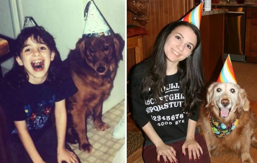 perro cachorro perro adulto cumpleaños