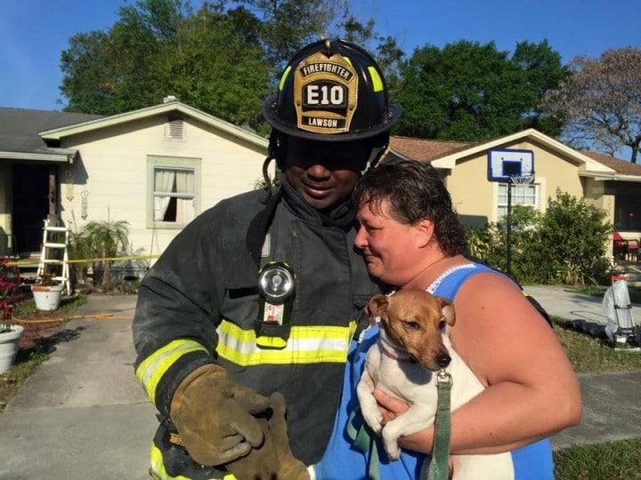 perro rescate bomberos
