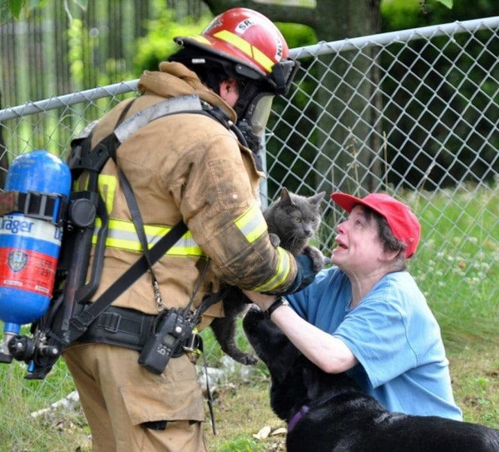 bomberos rescate gato