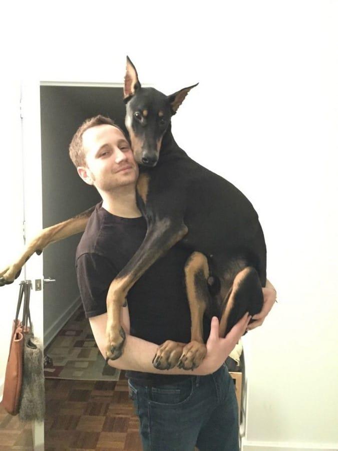 doberman abrazado a su dueño