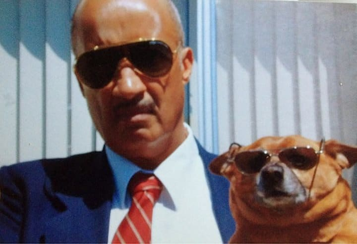 perro papá lentes de sol