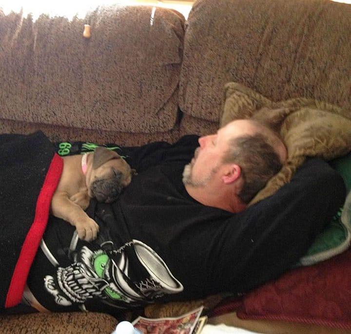 perro con papá en el sillón
