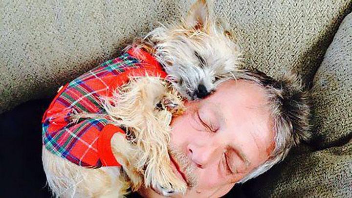 perro papá durmiendo juntos