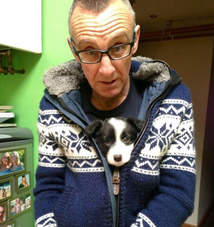perro y padre adorables