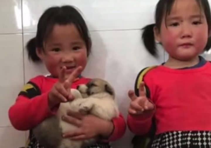 qi qi y su gemela con el cachorro