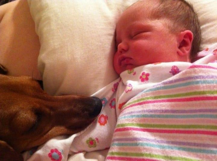 bebe duerme con bebe