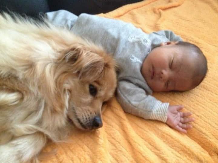 bebe y bebe durmiendo juntos suelo