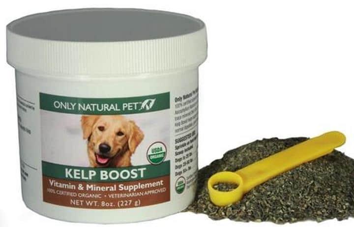 alga marina para perros
