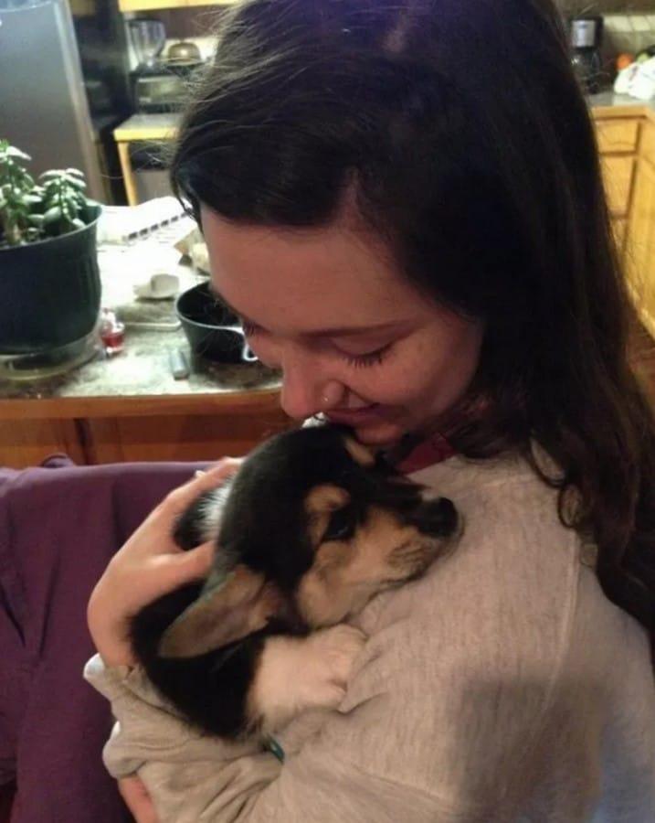 perro primer abrazo