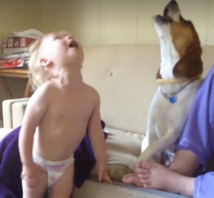 nino cantando con perro