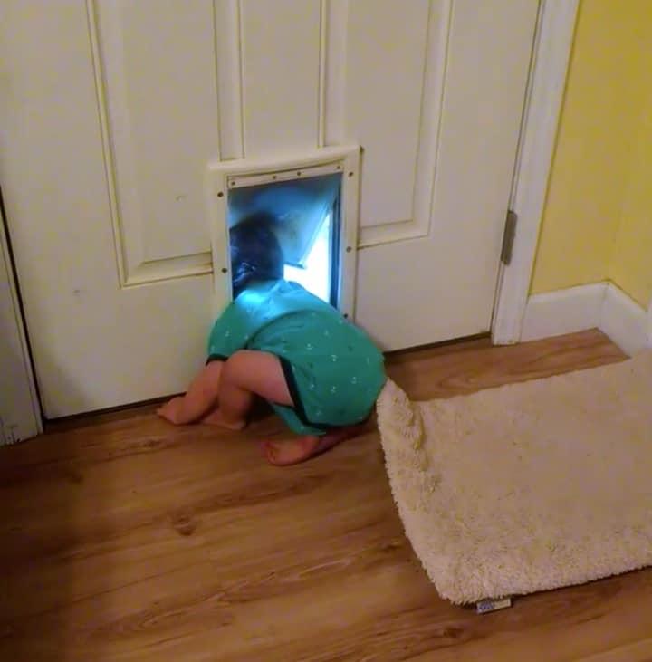 nino y perro escapando de casa