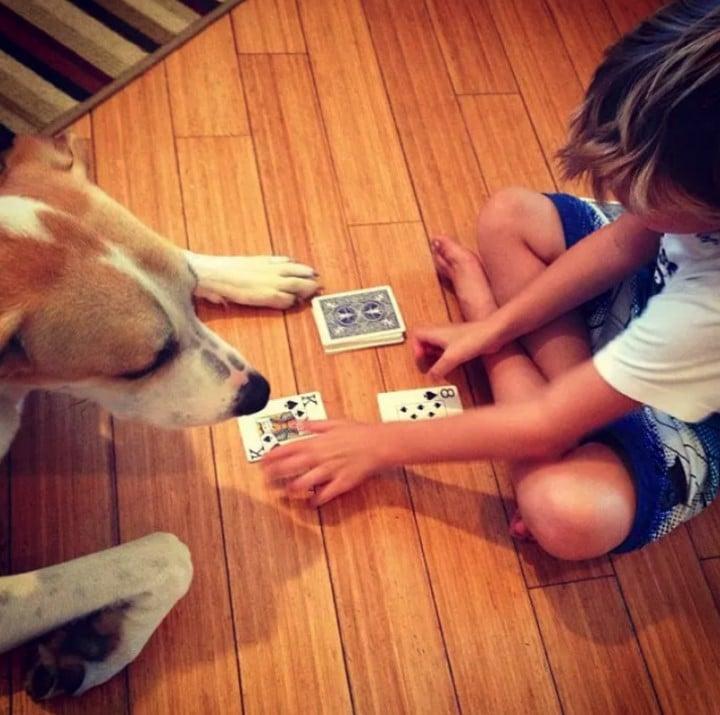 perro jugando niños