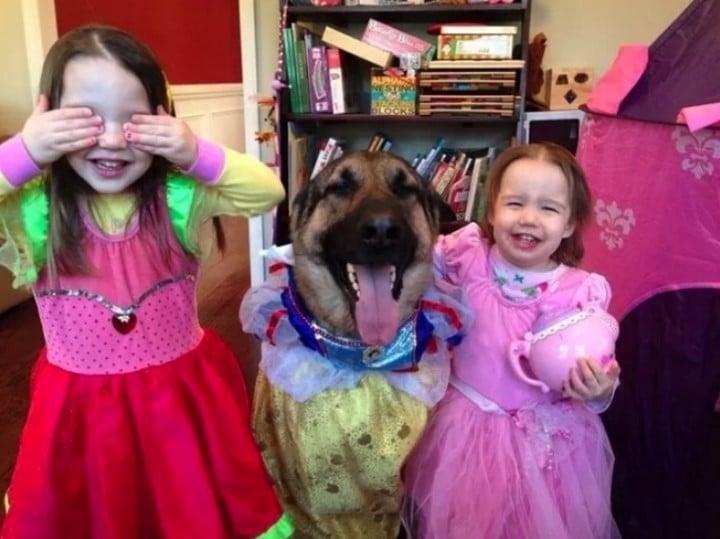 perro disfrazado con niñas