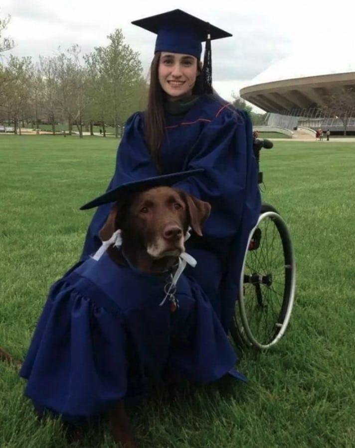 perro graduacion ama