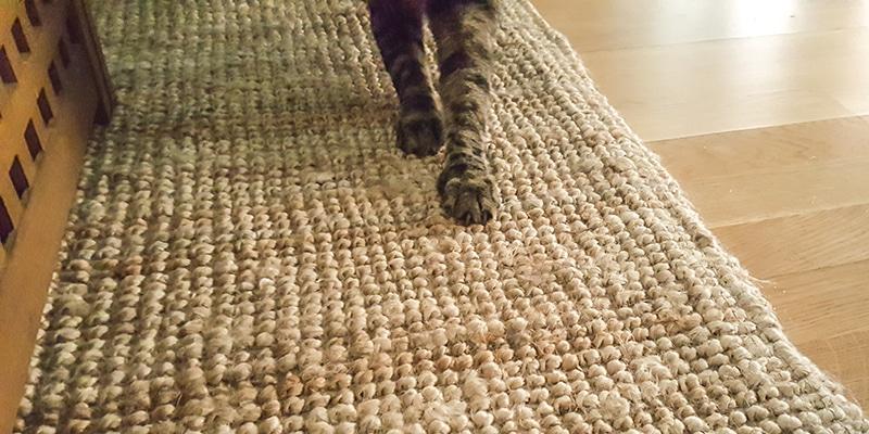 mejor alfombra gatos