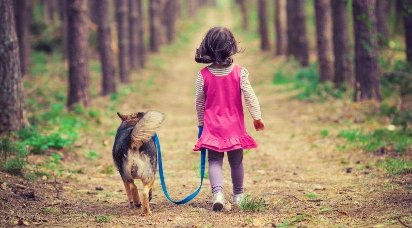 correa paseo niña campo
