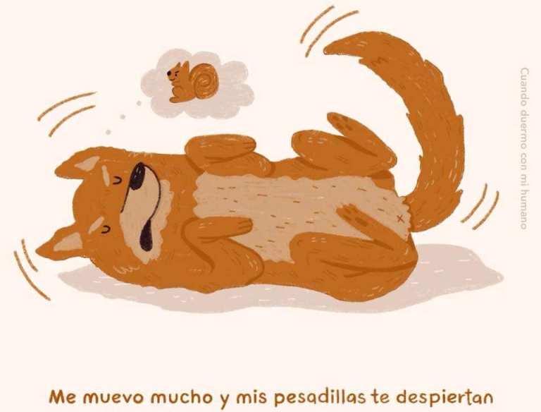 viñeta perro durmiendo