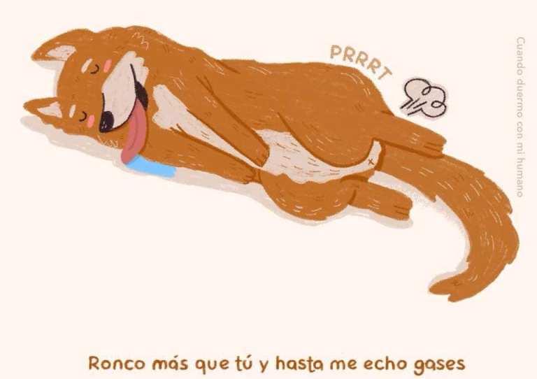 viñeta perro tirandose pedos