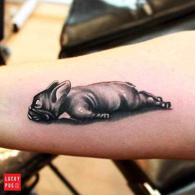tatuaje bulldog frances acostado