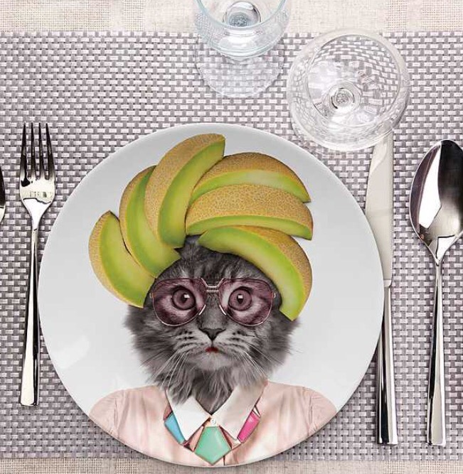 regalo plato de gato sexy para loca de los gatos