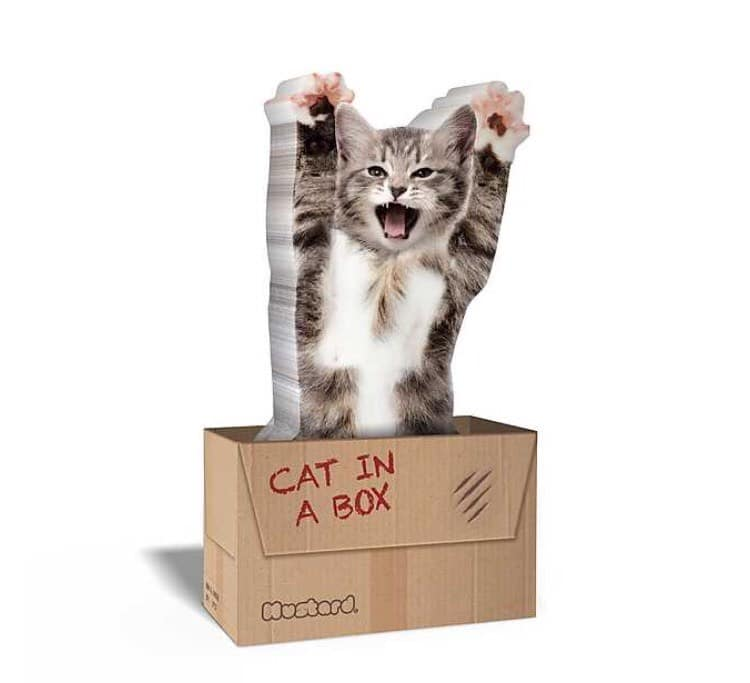 regalo post it gato loca de los gatos