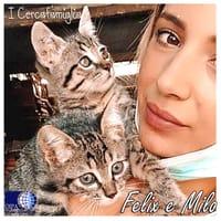 Felix e Milo