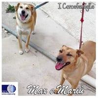 Max e Mariù