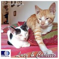 Carletto e Lucy
