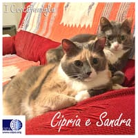 Cipria, Sandra e Leo