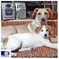 Georgette e Gegio
