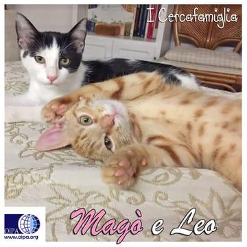 Magò e Leo