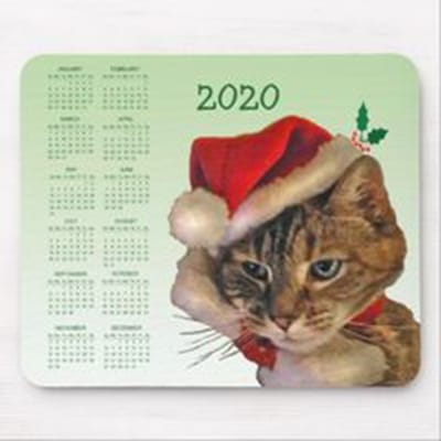 calendario-gato-2020.jpg