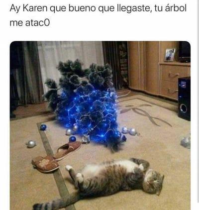 meme gato navidad